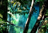 Lachua Jungle Safari